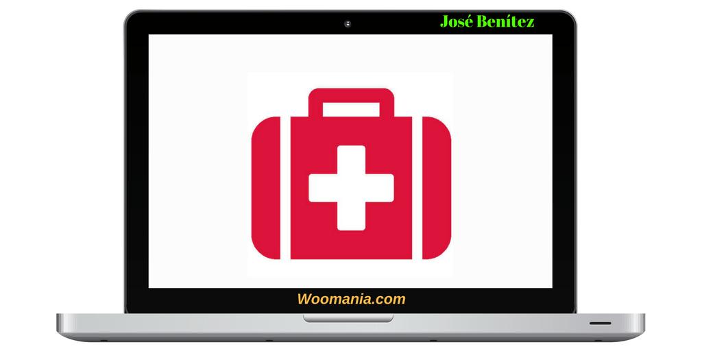 Servicio de Emergencia WordPress